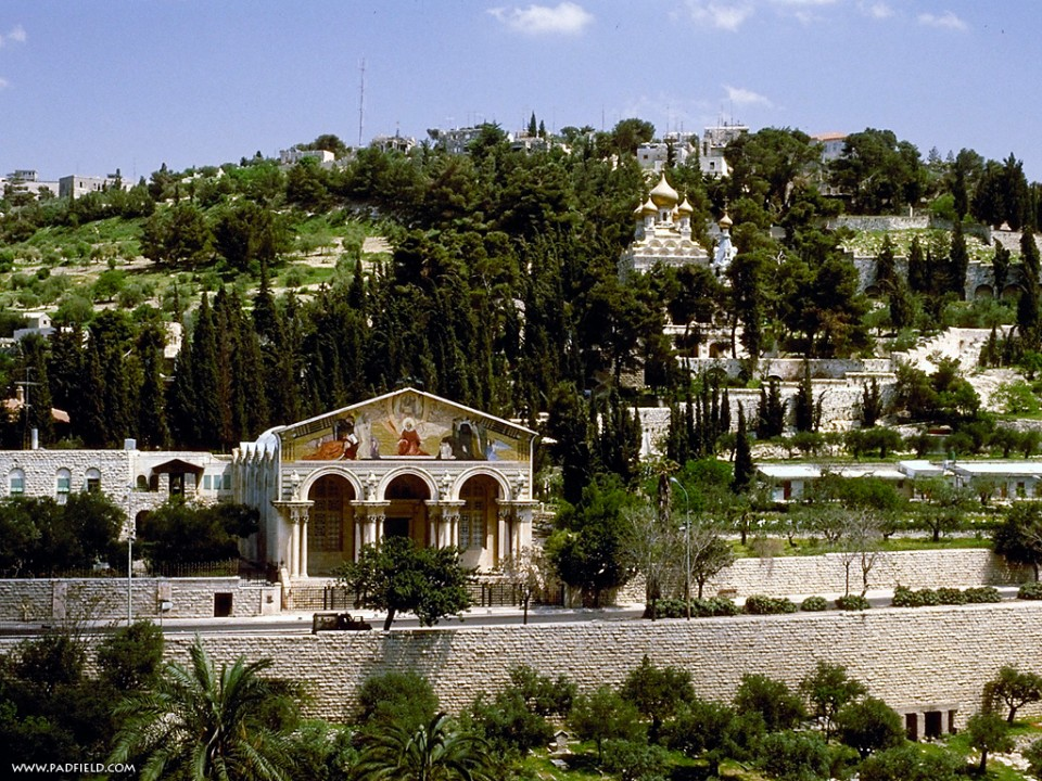 mount of olives 1